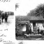 Ceylon 1_2